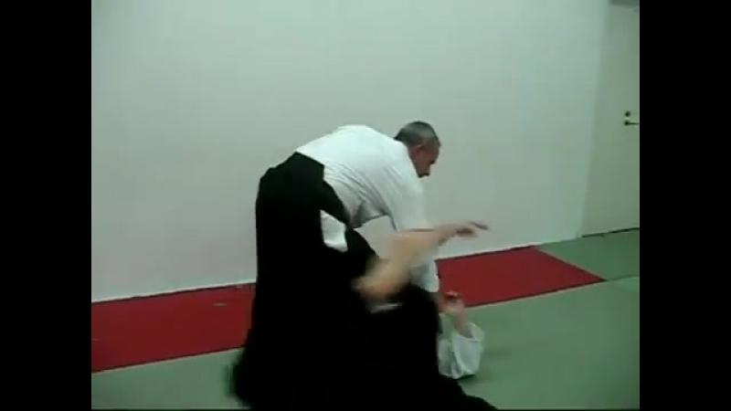Aikido - ATEMI - striking techniques, by Stefan Stenudd.mp4