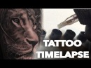 TATTOO TIME LAPSE REALISTIC LION CHRISSY LEE