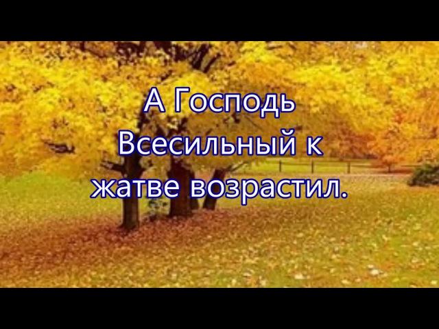 Осень золотая снова к нам пришла - Детская песня на Жатву