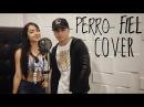 Perro fiel - Shakira Ft. Nicky Jam - Cover - Luisito Salome