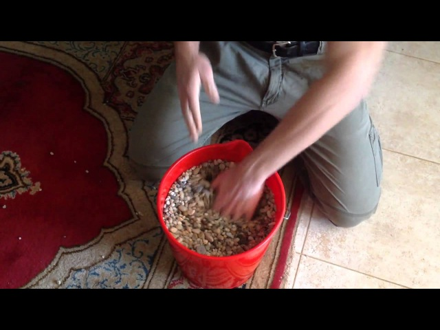 My 2 cents training tips.9. Striking gravel or beans. Iron Hand