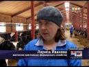 19 01 2018 тнт 43 регион Визит Игоря Васильева в Тужу