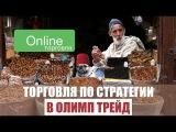 Видео по стратегии торговли в Олимп Трейд
