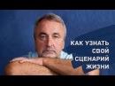 С. В. Ковалёв - Как узнать свой сценарий жизни