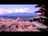 Красивая Японская Музыка!