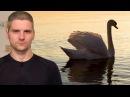 Почему хороших бросают - видео с YouTube-канала Блог Торвальда