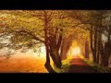 Guitar Music Cover - Lazy Afternoons - Slow Jazz Music - After The Love Has Gone -Background Music