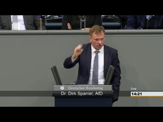 Klimalüge Klimaschutz, goldenes Kalb des 21.Jahrhunderts AfD Fraktion im Bundestag