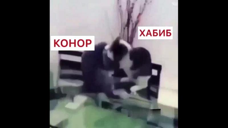 Хаба Конор Эпичный Dagestan