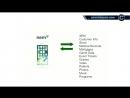 Что такое НЭМ Как работает НЭМ (NEM) (XEM)(1)