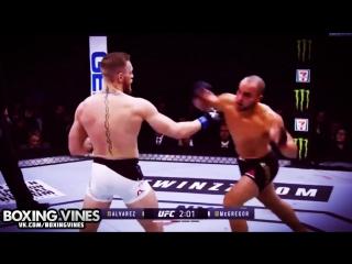 BOXING_VINES (Boxing Vines) l