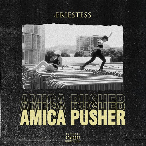 Priestess альбом Amica Pusher