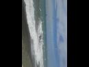 Адлер . пляж огонек ! чайки прилетели