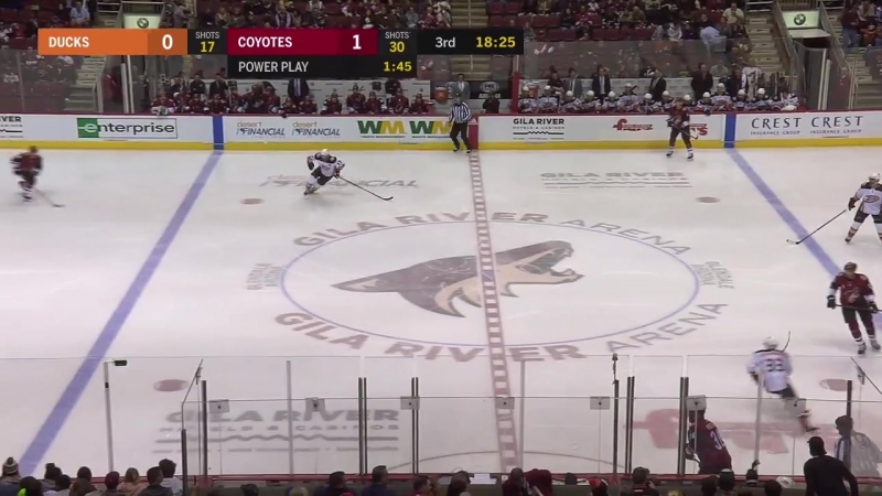 Anaheim Ducks – Arizona Coyotes, 25.02.2018