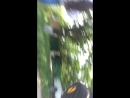 Рита Закарян Live