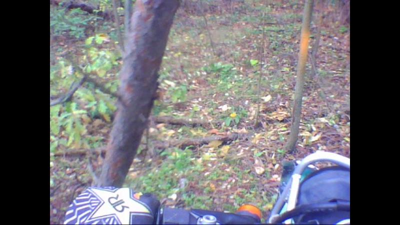 Эндуро через лес х. Броницкий