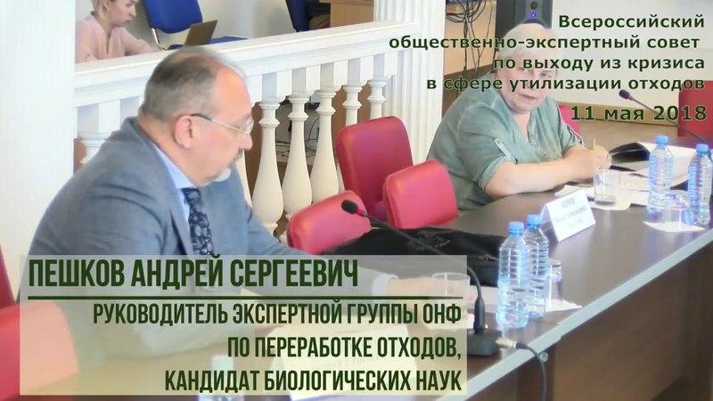2018-05-11 Часть1-04 ПЕШКОВ А.С. Совет REGNUM РАЕН