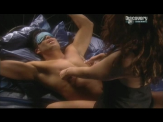 О сексе удовольствие и боль pleasure pain