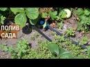 Устройство полива яблоневого сада. Капельный полов сада. КФХ Берзой.