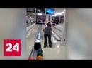 Бразильянка выбила страйк в телевизоре Россия 24