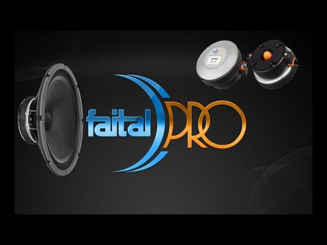 FaitalPro 4 шт 10FE200 2 шт рупора HF100