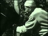 Таинственная стена (1967) научная фантастика