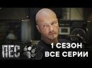 Пес - 1 сезон 2015 1-20 серия