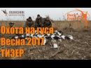 Охота на гуся DUCK EXPERT и ПОЛЕСНИК. Весна 2017 ТИЗЕР