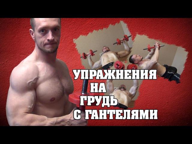 Упражнения для груди с гантелями eghfytybz lkz uhelb c ufyntkzvb