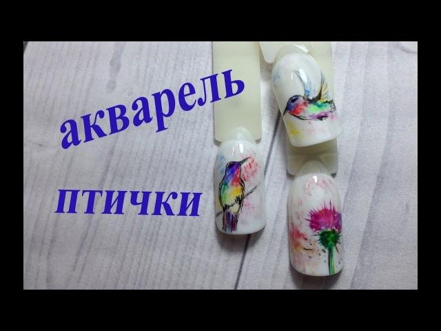 Акварель гель лаком.Колибри/Painting using gel polish in watercolour technique.Hummingbird