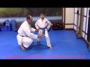 Как правильно принимать стойку каратэ шотокан Киба Дачи