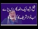 Sheikh rasheed bashan on muslim league N