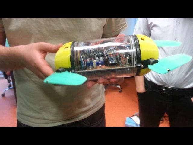 Robotic turtle, Biorobotics University of Tallinn