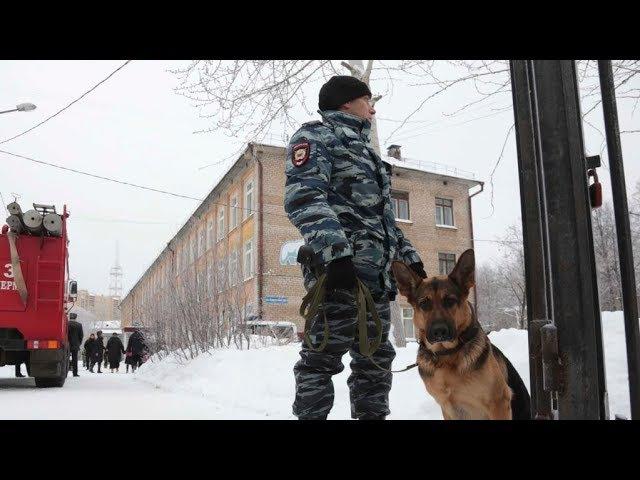 Поножовщина в пермской школе: 15 пострадавших | НОВОСТИ