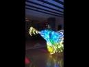 крылья выход на танец со змеёй