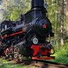 Заповедные железные дороги   Туры на поездах