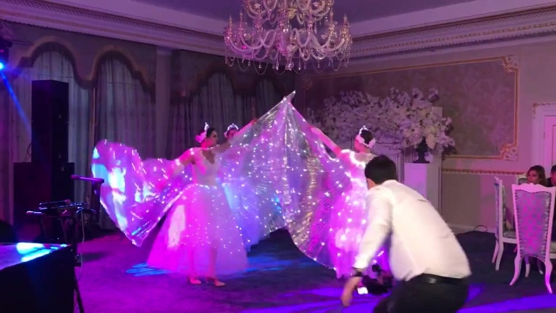 Wedding Show - световое оформление и сопровождение первого танца молодожен. Световое шоу на свадьбу - BRIO SHOW.
