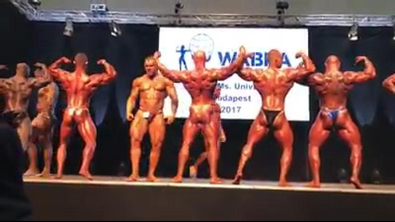 Pose Down Pro Bodybuilding / WABBA MrMs Universe 19.11.2017