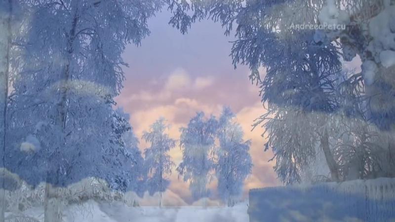 BERNWARD KOCH - Mysterious ways