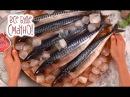 10 блюд из скумбрии. Часть 1 — Все буде смачно. Сезон 5. Выпуск 25 от 26.11.17