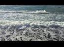 Кто заказывал море? Погода в Солнечном Сочи 12.12.2017
