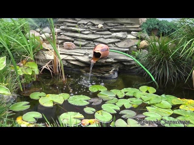 Волшебная медитация, звук, шум, журчание, гул воды, пение птиц, релакс, медитация, ...