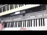 Кони в Яблоках Электроклуб Салтыков Yamaha PSR s670 Korg x50 Кавер