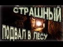 Страшный подвал Жуткое подземелье в лесу 💋Дом Игрушек💋