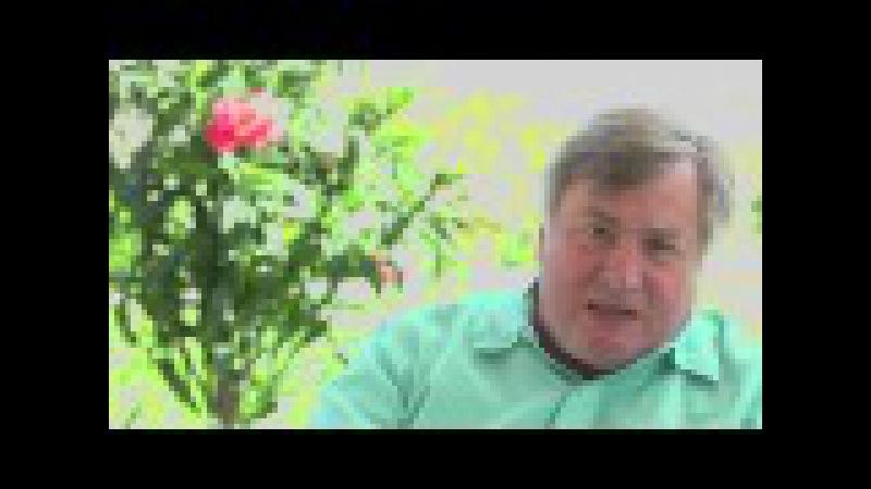 John Adams Stops a Possible Coup d'etat! Dick Morris TV: Lunch ALERT!