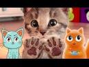 МОЙ МАЛЕНЬКИЙ КОТЕНОК симулятор милого котенка с веселым котиком Джемом