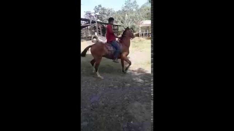 Montando a caballo, Costa Rica