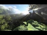 Nicholas Gunn - Sentinel of Eden
