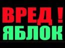 ВРЕД ЯБЛОК .