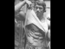 Arnold Schwarzenegger  - No Pain No Gain